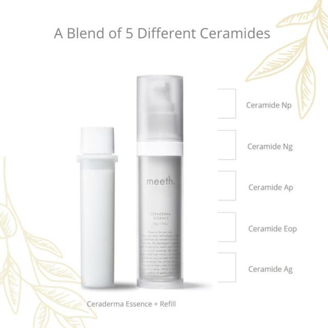 Ceramides are the key ingredient for maintaining long-term hydration and can serve as emergency relief for dry, chapped skin. meeth's latest product, Ceraderma Essence, makes the most out of this incredible ingredient. Featuring a luxe blend of 5 different new human ceramide types, it is designed to brighten, revitalize, and optimise skin complexion.   Because the best anti-ageing ingredients are often susceptible to UV light and air, meeth designed an airtight, refillable pump bottle for this special product, ensuring the ingredients will perform at their best.  You can now shop for a Ceraderma Essence + Refill Set with a 15% OFF on our site to save the environment.  Visit our shop and see link in bio  #meeth #meethglobal #skincare #japaneseskincare #luxuryskincare #kindtoskin #beauty #skincareproducts #glowing #skin #selfcare #precious #loveyourskin #serum #newproduct #protection #gentleskincare #kidndtoearth #ceramides #sensitiveskin #specialskincare #luxurious #naturalbeauty #skinproblems #beautyarticle #beautyinsights #tips #advice #Ceramidesserum #Ceramidesskincare